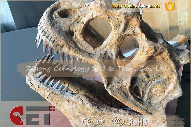 Cet N420 Cetnology Dino Head Bone Skeleton Dinosaur Fossil T Rex