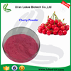 100% Natural Organic Cherry Fruit Extract Powder / High Quality Acerola Cherry Extract Powder