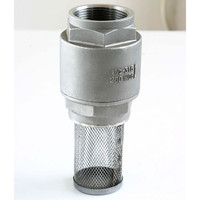 2 pc spring vertical ball check valve with factory price 200 psi filter screen