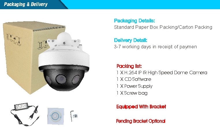 180 Degree Multi-image 12MP HD IP Dome Camera fisheye panoramic ip camera with 4mm fixed-focus lens