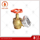 Brass Gate Valve with Storz coupling