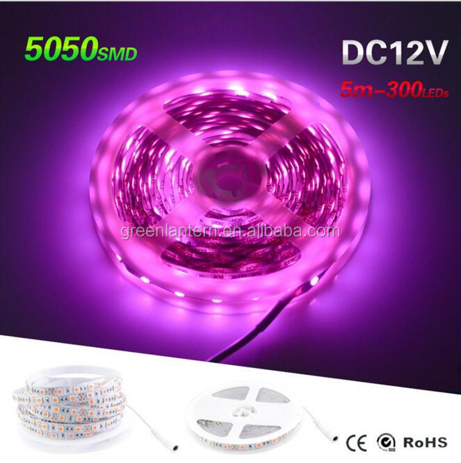 High Quality 5050 2835 Pink Led Strip 5M 300LEDs DC12V Flexible Light Tape The Most Romantic Color With DC Plug