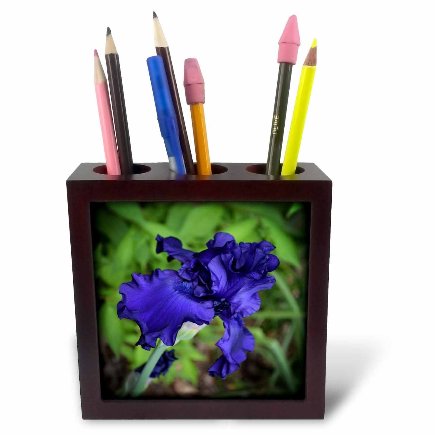 Cheap iris blue flower find iris blue flower deals on line at get quotations 3drose whiteoaks photography and artwork iris flowers royal blue at its best is a izmirmasajfo
