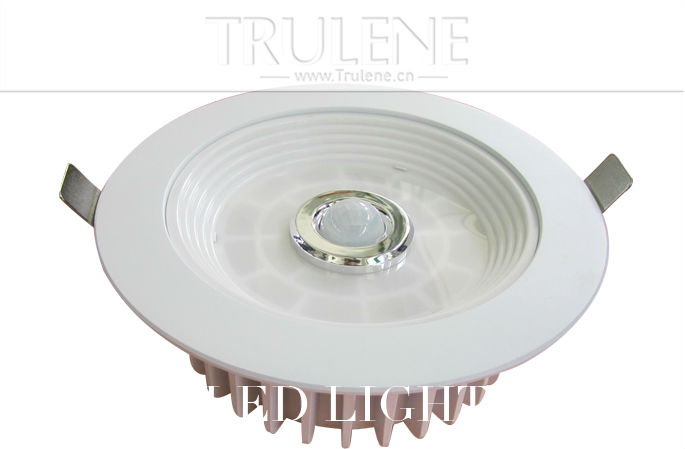 LED light Downlight (4).png