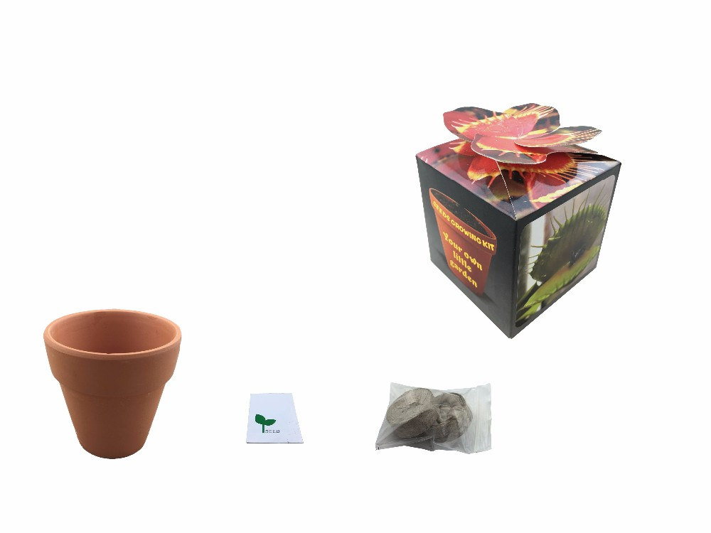 Inexpensive Terracotta Plant Used Nursery Pots With Seed Wholesale - Buy  Terracotta Pots Wholesale,Plant Pots Wholesale,Used Nursery Pots Product on