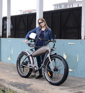 customized mtb fat tire electric bike 48v 500w