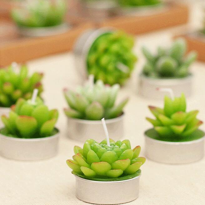 Succulent Shape Pure Paraffin Wax Home Decoration Art Craft Candle