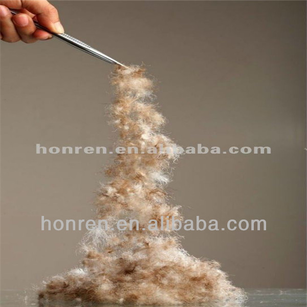2-4cm washed white goose or duck feathers for sale with DOWNPASS RDS YR0006