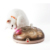 New Design Cat Puzzle Turntable Electric Maglev Pet Interactive Toy With Moving Feathers