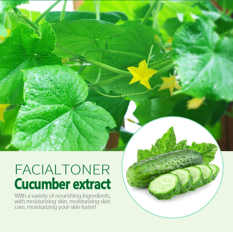 OEM ODM Rorec wholesale Cucumber extract moisturizing skin rejuvenation best skin care facial cleanser