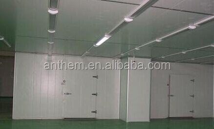 cold storage for fruit and vegetable warehouse,pu panel cold room
