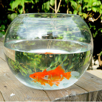 Decorative Glass Fish Bowls Simple Wholesale Cheap Beautiful Round Borosilicate Glass Fish Bowl Decorating Design