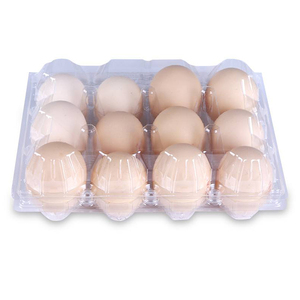 disposable plastic quail egg packaging container /boxes