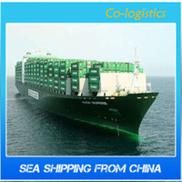 Sea freight forwarder from Guangzhou to Saudi Arabia Dammam fulfillment services/dropshipper---Lynn--XTA10