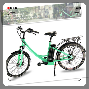 36v 250w hub motor bicycle/cheap electric bike/green city ecobike for sale
