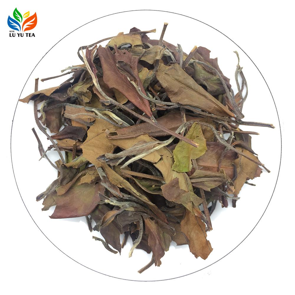 High mountain white tea with cheap price oganic loose slim Fujian Fuding white tea weight loss drink - 4uTea | 4uTea.com