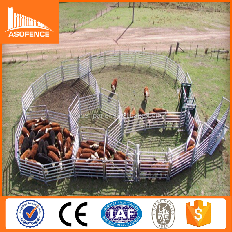 Cattle ranch yards equipment used for farm handling Equipment