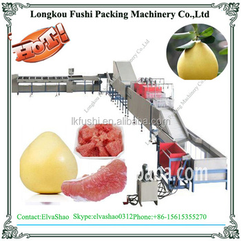 Pomelo Washing And Waxing Machine With Ce Certification - Buy Pomelo ...