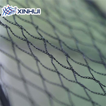 Agriculture Use Anti Bird Barrier Net Zoo Mesh Bird Netting - Buy Bird  Netting,Mesh Bird Netting,Agriculture Bird Netting Product on Alibaba com