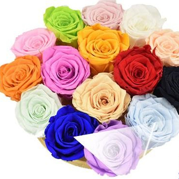 2019 Best Sale Wholesale Preserved flower 5-6cm Rose Head for Home decoration