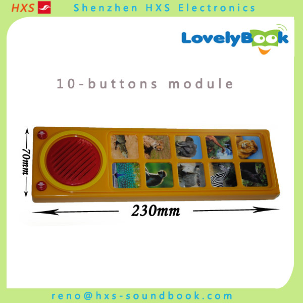 Custom programmable sound module for toys manufacturer