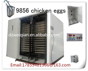 WQ-9856 eggs egg incubator in dubai/CE approved poultry chicken hatchery machine/egg incubator hatchery