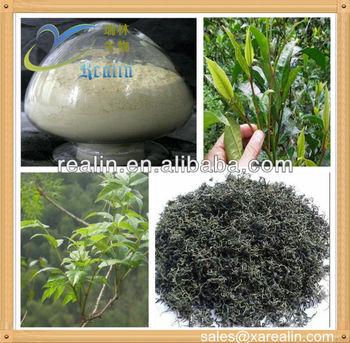 Dihydromyricetin Vine Tea Extract Powder DMY 98% High Quality Competitive Price