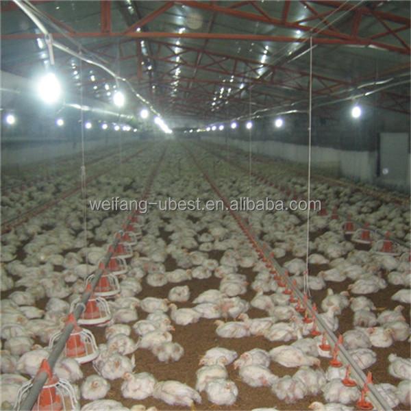 Poultry Farming Pdf
