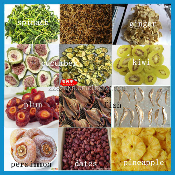 how to use a food dehydrator for fruit
