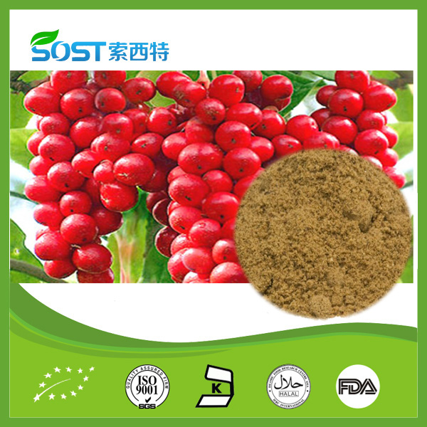 Schisandra chinensis extract for Enhancing intelligence and promoting physical endurance