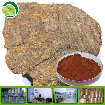 how to make mushroom extract powder