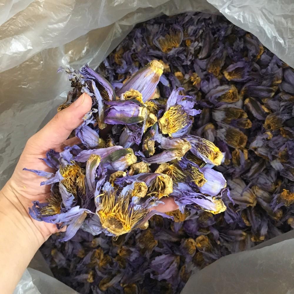 4036 Lan Lian Hua Dried Blue Lotus Flower