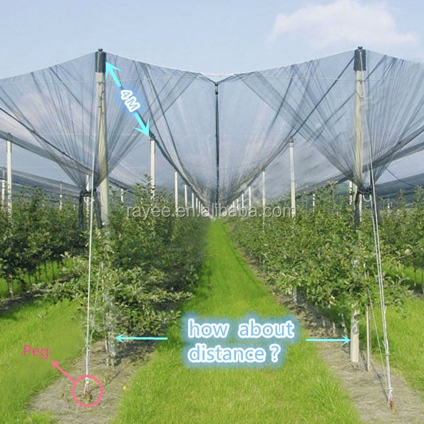 anti hail mesh <strong>netting</strong> for tree plant fruit and pe Cover Material anti-hail net,hail mesh , tela antigranizo para la agricultura