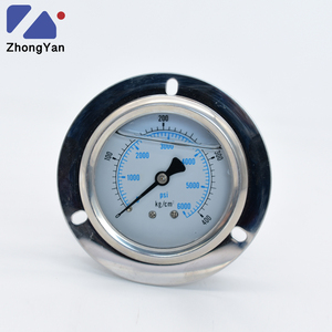 China Manufacturer 400 Bar 6000 PSI Stainless Steel Oil Pressure Gauge