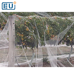 invisible bird netting,agricultural bird netting,swallow bird nest