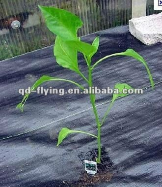 Low price nonwoven fabric for agriculture fabric pp weed control