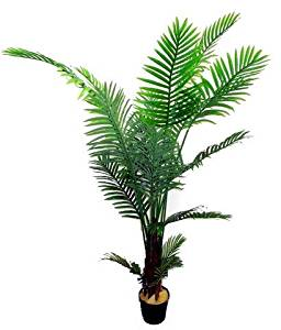 Admired by Nature GTR3627-NATURAL Artificial Paradise Palm Tree Plant in Plastic Pot44; Green - 6 ft.