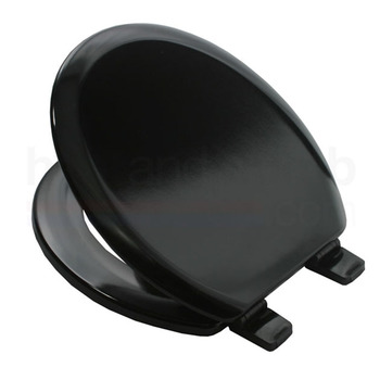 Moulded Veneer Painting Toilet Seat Cover With Chrome Hinges Soft