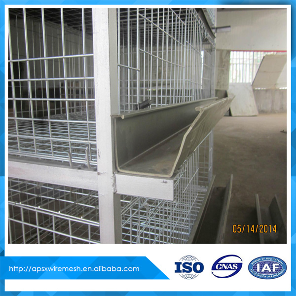 design broiler chicken cages for sale
