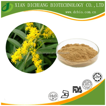 factory supply 100% herbal Goldenrod Extract Powder Flavonoids 3%