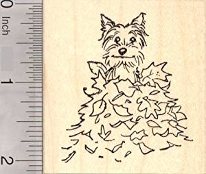 Terrier Dog Sitting in Autumn Leaves, Thanksgiving Rubber Stamp, Cairn Terrier, Silky Terrier, Yorkie
