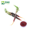 Factory Supply Appearance Dark purplish red powder Natural Red Radish Powder Extract