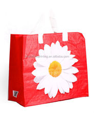 China manufacturer wholesale non woven bag/pp non woven bags/non woven student's design bag