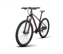 Giant biking mountain Bike 29er