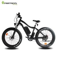 A Variety Of Capacity Fat Tire Electric Mountain E Bike