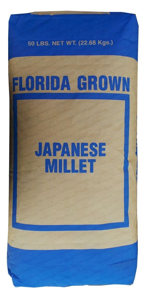 SeedRanch Japanese Millet Seed - 20 Lbs.