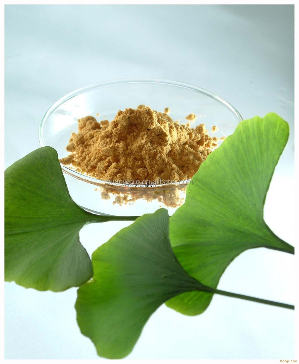 hot sale High quality ginkgo biloba leaf extract 24/6 China Supplier