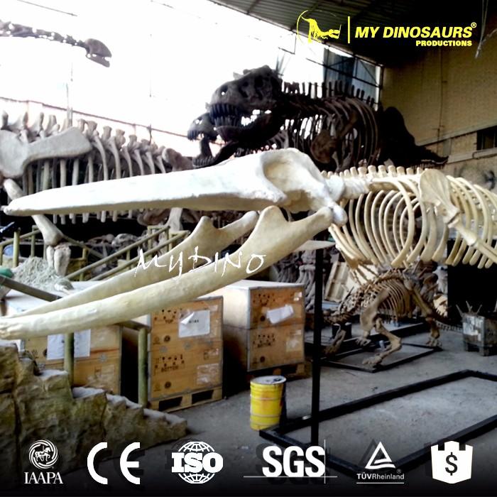 Mi Dino-grandes Esculturas De Animales Esqueleto Ballena Esqueleto ...