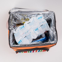 Cheap and light custom gel ice pack can be cut small sheets gel ice pack for food delivery