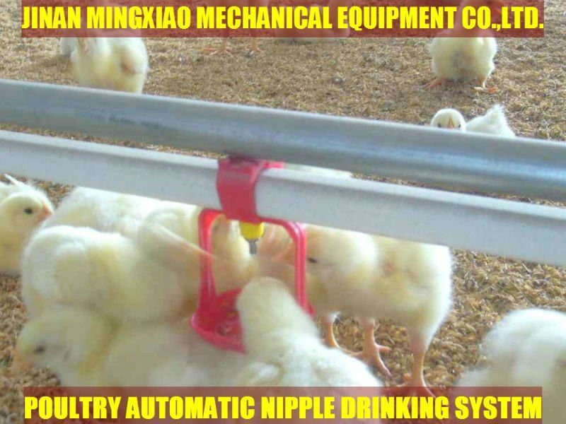 Plastic poultry farm equipment hanging waterer for chickens